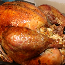 Poultry - Turkey recipes