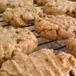 Peanut Butter Chocolate Chip Cookies (PBCC Cookies)