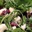 Beetroot, Rocket & Goat Cheese Salad