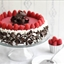 Chocolate Raspberry Bavarian Torte