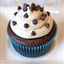 Gluten Free Vegan Mocha Cupcakes
