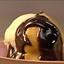 Profiteroles with Vanilla Ice Cream and Chocolate Sauce
